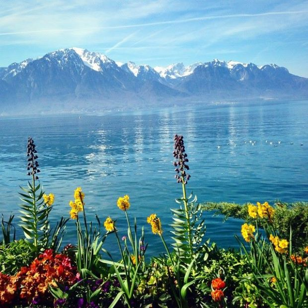 Magical Montreux